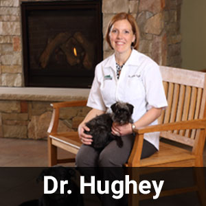 Dr. Hughey