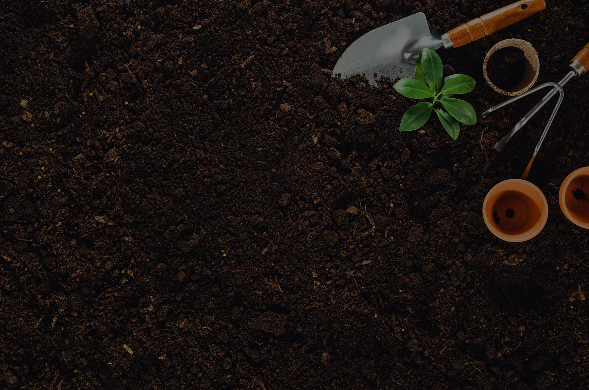Gardening tools on fertile soil texture background seen from above