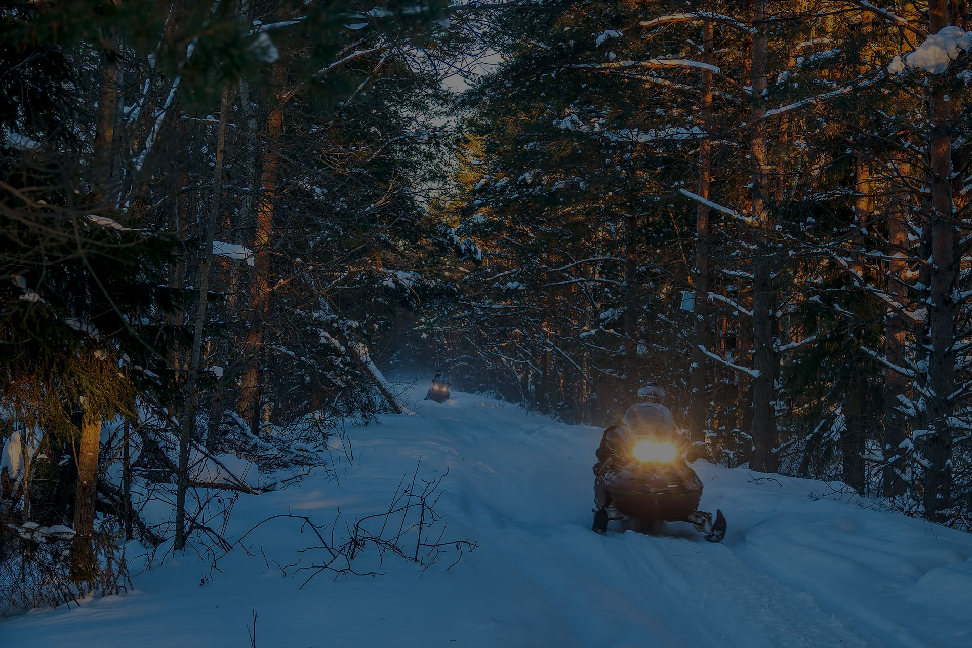 Snowmobiles travel on a winter forest road far from civilization.