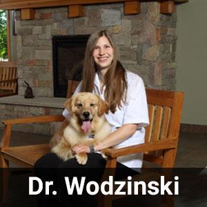 Dr. Wodzinski
