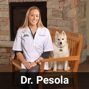 Dr. Pesola