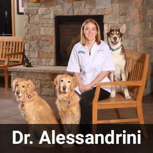Dr. Alessandrini